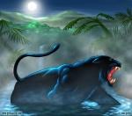 PANTERA NEGRA EN EL AGUA black-panther