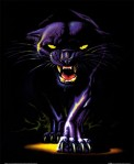 black_panther1-837x1024