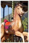 CABALLO DE CARRUSEL - CARROUSEL HORSE