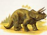 TRICERATOP Dinosaur-Sizes