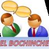 EL BOCHINCHE DE LOSINSECTOS